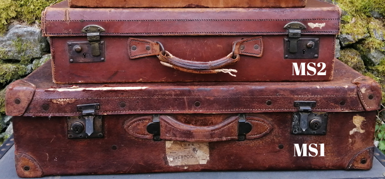 Medium leather suitcases