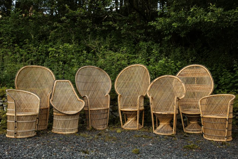 Rattan and Peacock chairs